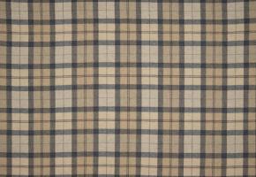 Фото - Ткани для штор Fine Textilverlag - 426133>