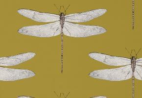 Фото - Обои для стен с рисунком насекомых - 237071>