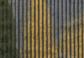 Фото - Бархатные шторы - 473932>