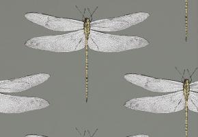 Фото - Обои для стен с рисунком насекомых - 237069>