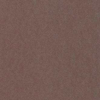 Loymina Satori 2 ST0101