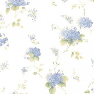 Aura Little England 3 CN24645
