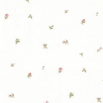 Aura Little England 3 PP27833