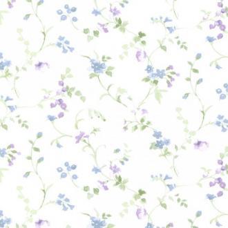 Aura Little England 2 PR33823