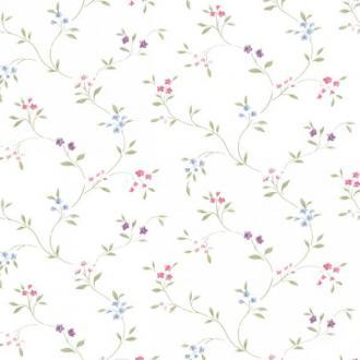 Aura Little England 2 PR33801